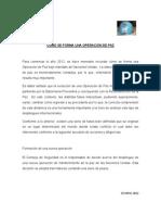formacion_de_una_opaz_2012