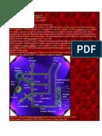 teoria del riñon