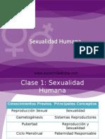 Sex Human
