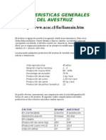 Caracteristicas Generales Del Avestruz