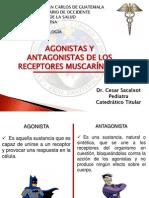 Agonistas y Antagonist As de Los Receptores Muscarinicos