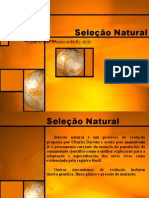 27924638 Selecao Natural