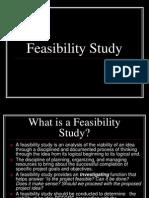 Gold Mining Feasibility Study PDF | Gold Mining | Mining