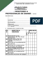Ficha de Monitoreo-saanee