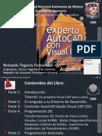 Experto AutoCAD Con Visual LISP-A