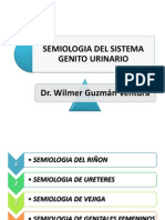 semiologadelsistemagenitourinario-100504000327-phpapp02