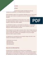 PSICOMOTRICIDAD FINA.doc
