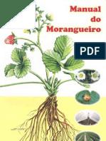 Manual Do Morangueiro1