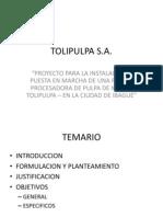 Tolipulpa - Gerencia de Proyectos