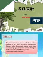XILEM