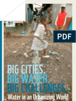 Big Cities Big Water Big Challenges