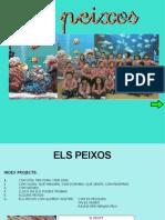 ELS PEIXOS PROJECTE 2012