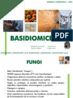 BASIDIOMICETOS  2012-1.pdf