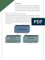 Risk Management in Banks