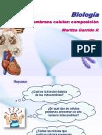 Clase 7 Membrana celular modelo de organización