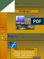 primeraclase-090519191958-phpapp01