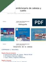 Desarrollo Embrionario de Cabeza y Cuello Blog