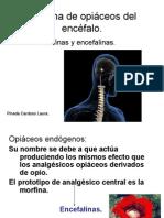 Sistema de opiáceos del encéfalo
