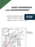biostratigrafiforaminiferadanpaleoenvironment-111009035037-phpapp02