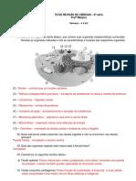 8ano Gabarito TD-De-Revisao Ciencias