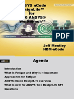 ANSYS nCode Design Life - User Groups 2011