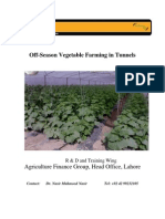 Tunnel Farming Report