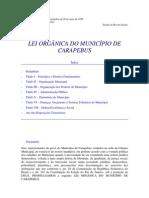Lei Organica - Carapebus