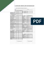 Checklist Vehiculo Liviano 2