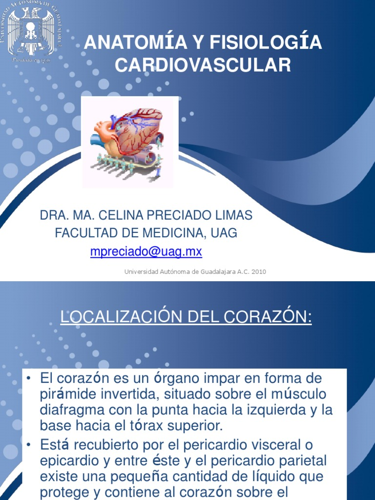 1.- Anatomia y fisiologia