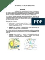 FUNCIONES GENERALES DE LOS SERES VIVOS NUTRICIÓN