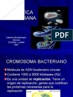 geneticabacteriana-2