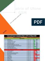 EFE Matrix of Ufone