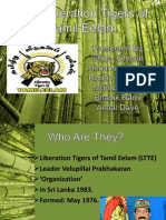 The Liberation Tigers