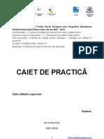 Caiet_Practica