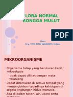Flora Normal