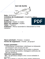 Proiect de Lectie Margulescu Adela Grupa Mica -Avionul