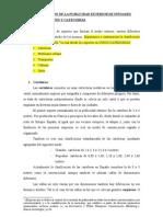 Clasificacion Soportes Exterior Infoadex