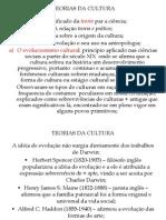 TEORIAS DA CULTURA