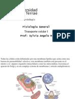 2-transporte_celular-1-w