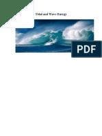 1- Tidal & Wave Energy