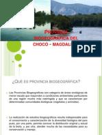 Provincia biogeográfica del chocó - magdalena