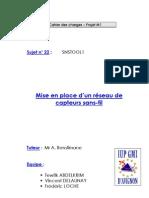 RapportS1M1RTM22