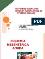 20110419_enfermedades_vasculares_intestinales