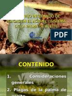 manejointegradodeplagasenpalmadeaceite2-101023125011-phpapp02