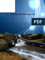 canalesdepersepcin-100507124819-phpapp01