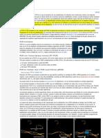 Tipos de PCR Wikipedia)