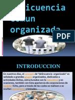 Delincuencia Comun Organizada (Terminada )1