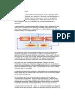 MIGUEL JONATAN PAULA REYES 09-SIIN-1-020 Investigacion Ingeniería Concurrente