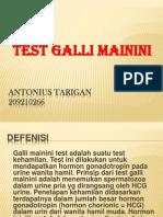 Test Galli Mainini