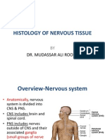 1st Lecture on Histology of Nervous Tissue by Dr. Roomi